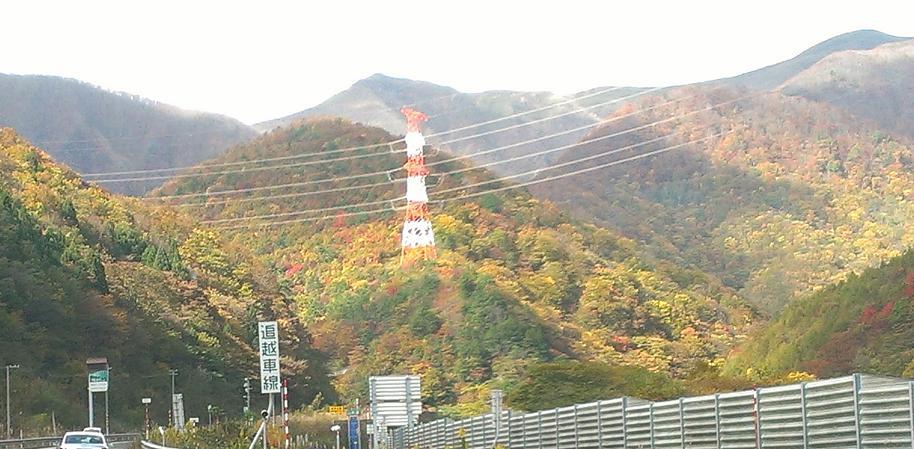 kouyouyama.jpg