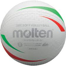 softvolleyball02.jpg